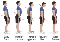 Posture- it affects your HEALTH too!!!